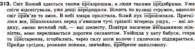 10-ukrayinska-mova-op-glazova-yub-kuznyetsov-2010-akademichnij-riven--vpravi-313.jpg