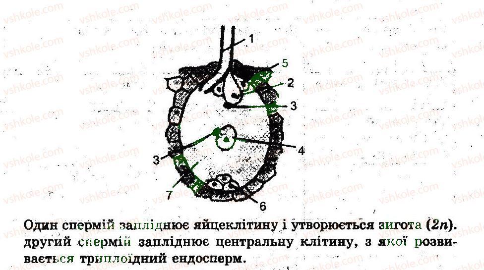 11-biologiya-io-demicheva-2011-kompleksnij-zoshit--rozmnozhennya-organizmiv-variant-3-7-rnd9991.jpg