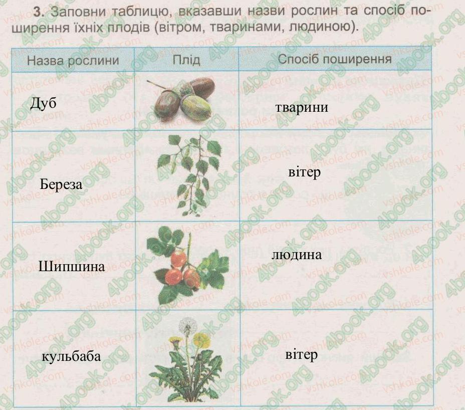 3-prirodoznavstvo-tg-gilberg-tv-sak-2015-zoshit--tema-5-roslini-tvarini-i-yih-seredovischa-zhittya-25-kvitkovi-roslini-rozmnozhennya-kvitkovih-roslin-3.jpg