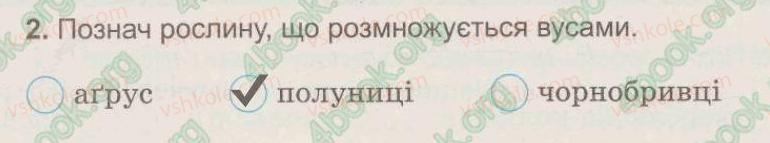 3-prirodoznavstvo-tg-gilberg-tv-sak-2015-zoshit--tema-5-roslini-tvarini-i-yih-seredovischa-zhittya-27-yak-virostiti-novu-roslinu-bez-nasinnya-2.jpg