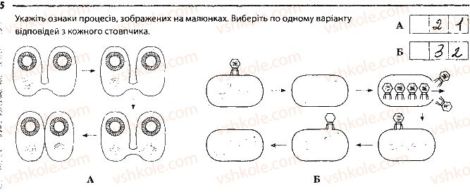 9-biologiya-km-zadorozhnij-2017-robochij-zoshit--tema-5-zakonomirnosti-uspadkuvannya-oznak-storinka-39-5.jpg