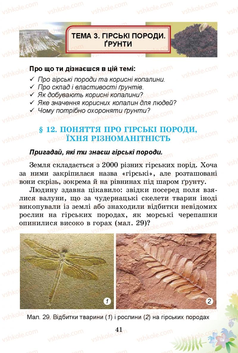 Страница 41 | Учебник Природознавство 3 класс Т.Г. Гільберг, Т.В. Сак 2014