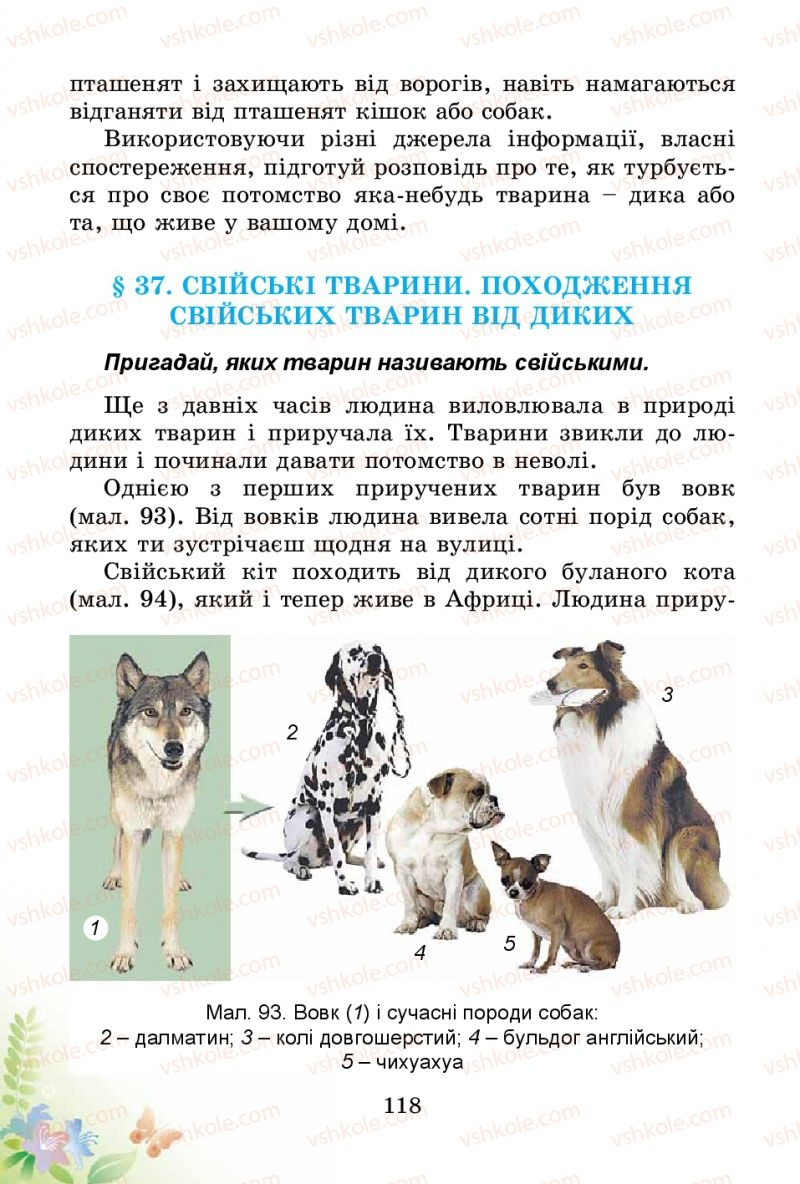 Страница 118 | Учебник Природознавство 3 класс Т.Г. Гільберг, Т.В. Сак 2014