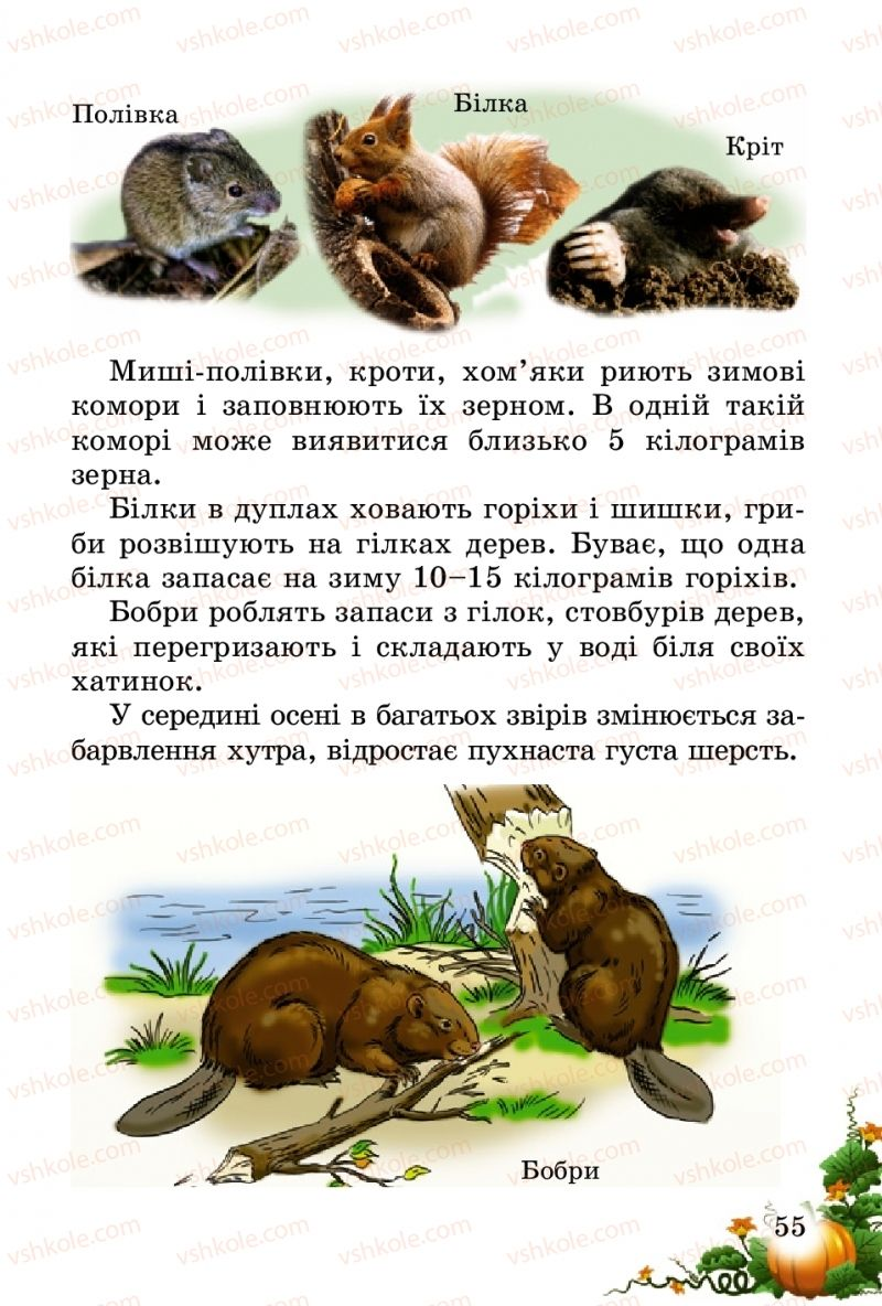 Страница 55 | Учебник Природознавство 2 класс Т.Г. Гільберг, Т.В. Сак 2012