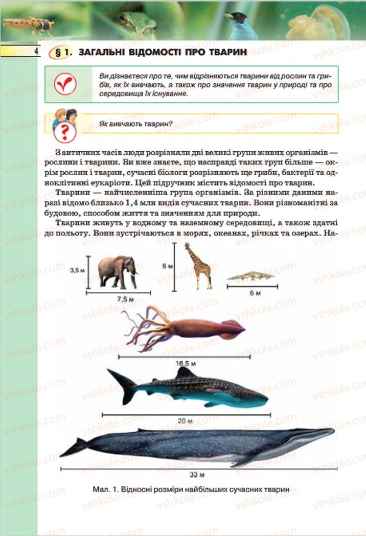 Страница 4   Учебник Біологія 7 класс І.Ю. Костіков, С.О. Волгін, В.В. Додь 2015