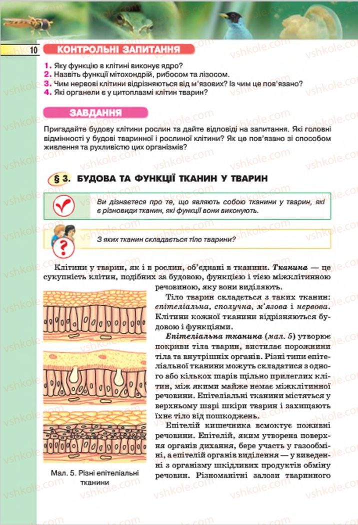 Страница 10 | Учебник Біологія 7 класс І.Ю. Костіков, С.О. Волгін, В.В. Додь 2015