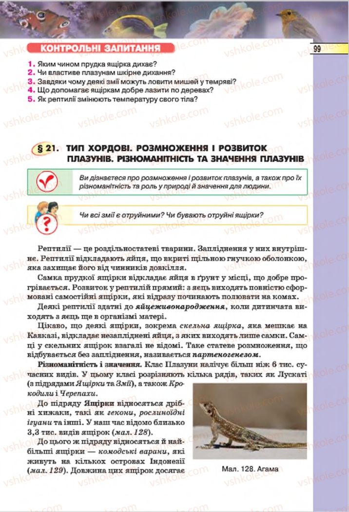 Страница 99   Учебник Біологія 7 класс І.Ю. Костіков, С.О. Волгін, В.В. Додь 2015