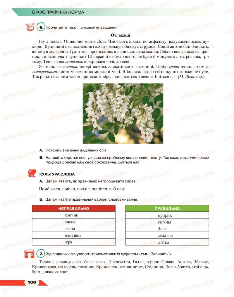 Страница 100 | Учебник Українська мова 10 класс О. М. Авраменко 2018